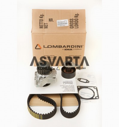 Kit Water Pump, Veebelt and Tensioner Lombardini LDW 502