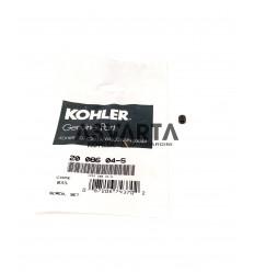 SCREW KIT Kohler motors