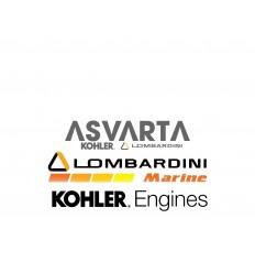 Screw M10x1.5x50 Lombardini LDW 1503