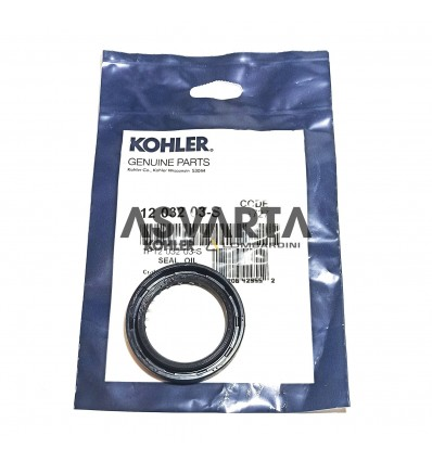 Oil Seal  Kohler CH 430 / CH 450